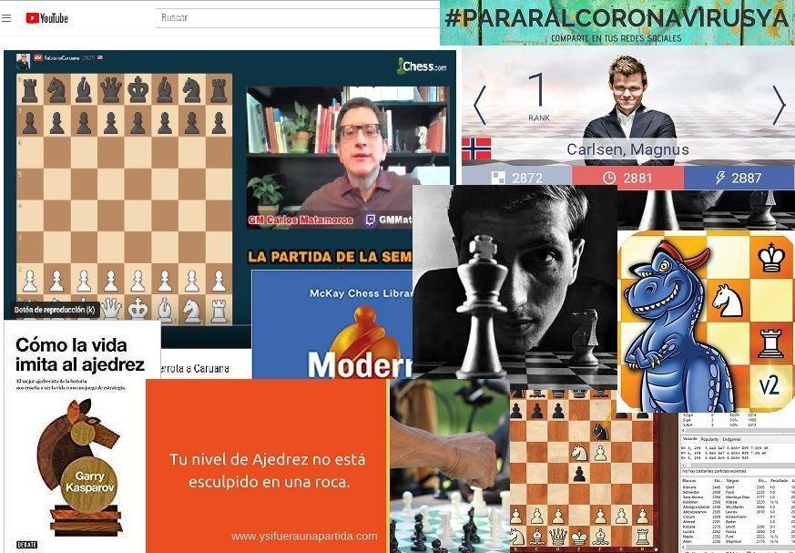 blog de ajedrez