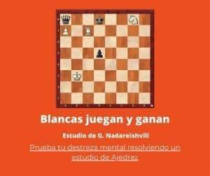 portada estudio de ajedrez